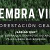Blog ReforestacionGE